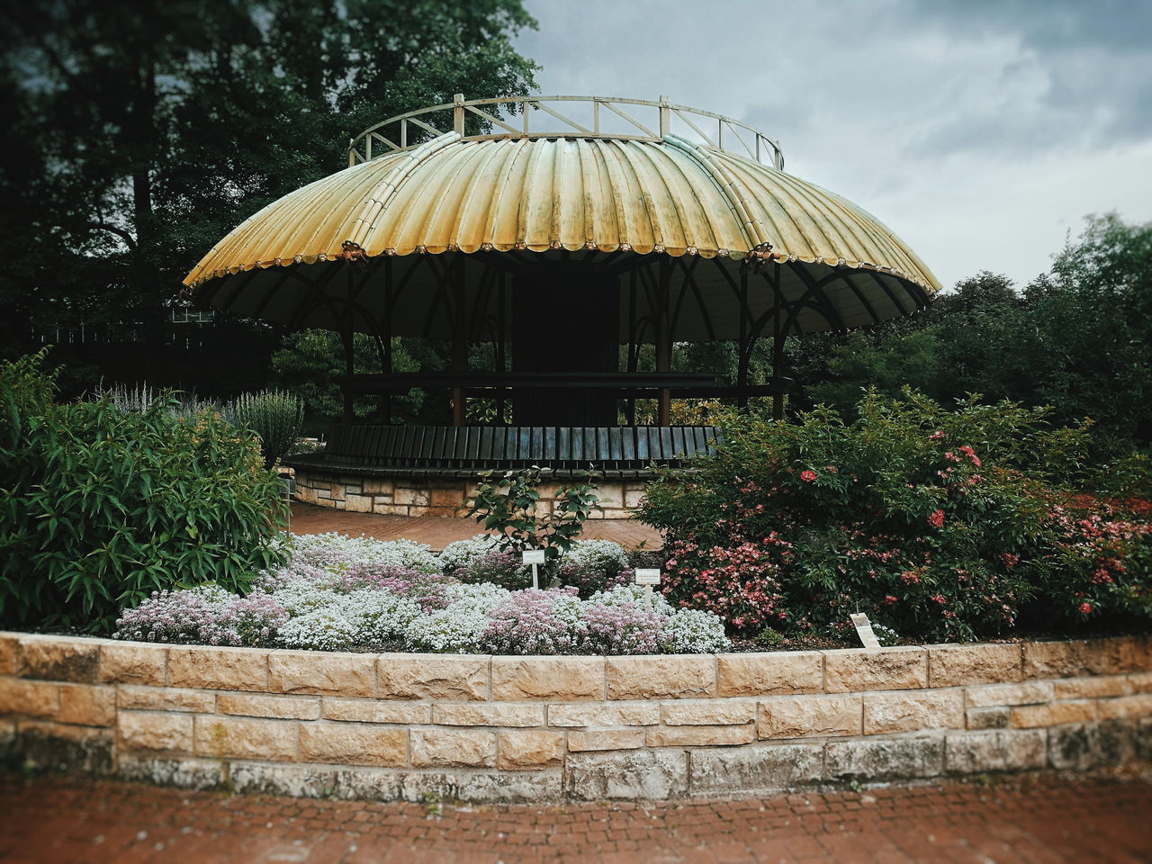 You can stay under my Umbrella... Thatched Roof Outdoors Day Tree Architecture No People EyeEm Selects Beauty In Nature Plant Flower Leisure Activity Sommergefühle