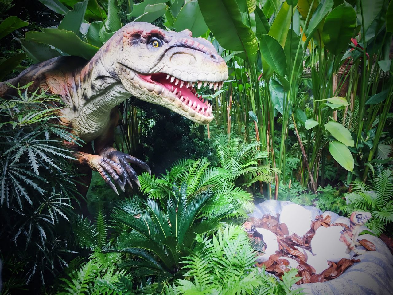 Dinosaur Extinct No People Outdoors Iphone 6 IPhone Photography Iphonephotography Singapore Zoo. Singapore Zoological Garden Singapore Zoo Dinosaurs Dinosaur Baby Dinosaur In Nest Baby Dinosaur