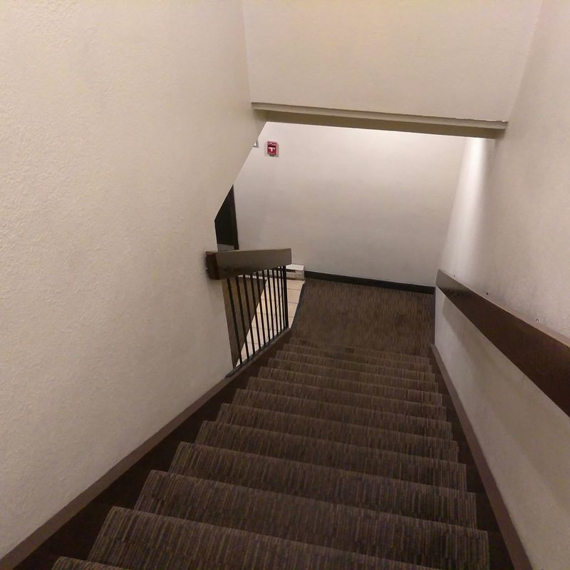 Steps Steps And Staircases Staircase Indoors  Railing Wall - Building Feature Architecture Ceiling Day The Way Forward Stairs Hand Rail Stairway No People Bannister