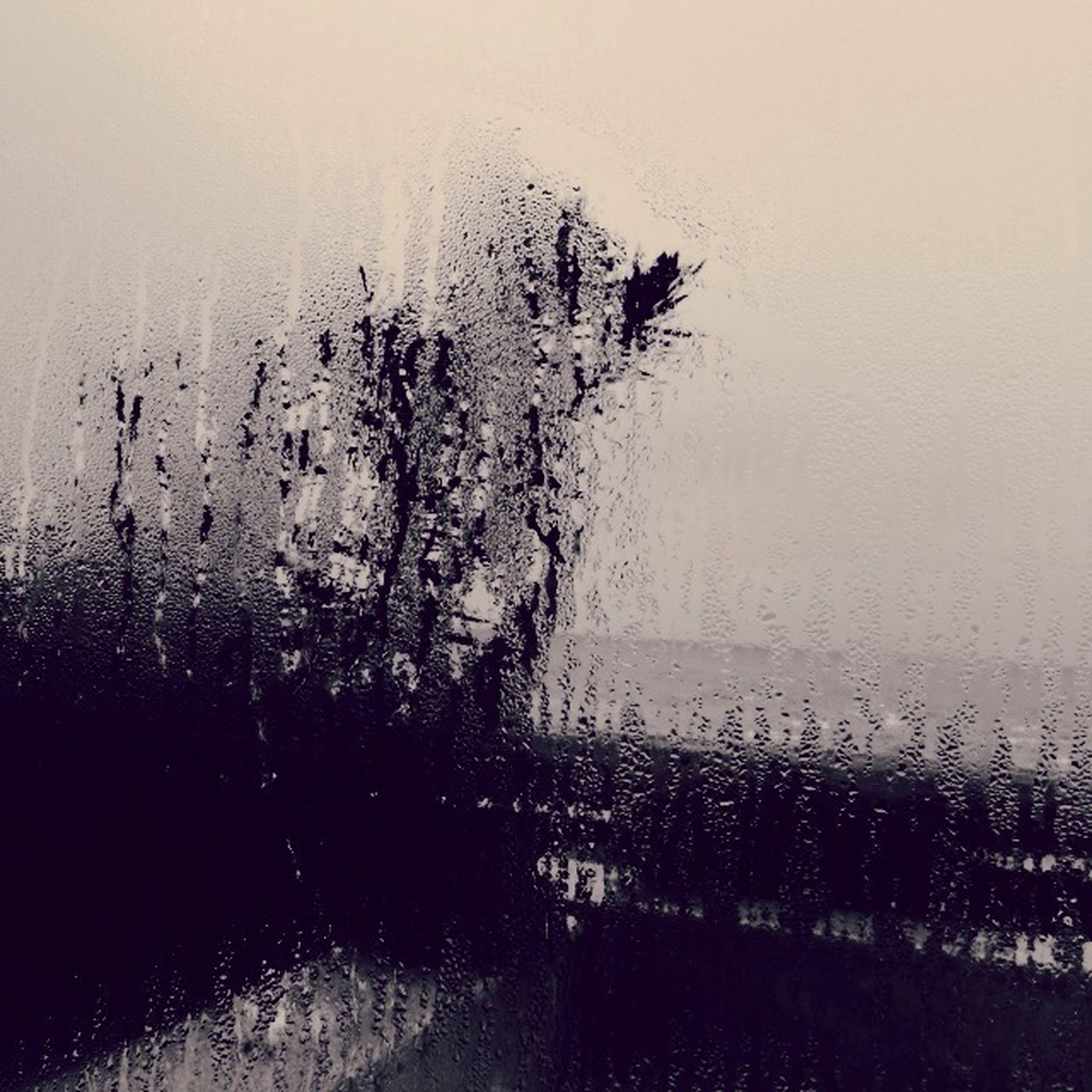 drop, wet, rain, water, window, transparent, glass - material, raindrop, indoors, weather, season, monsoon, glass, focus on foreground, rainy season, sky, close-up, droplet, nature, day