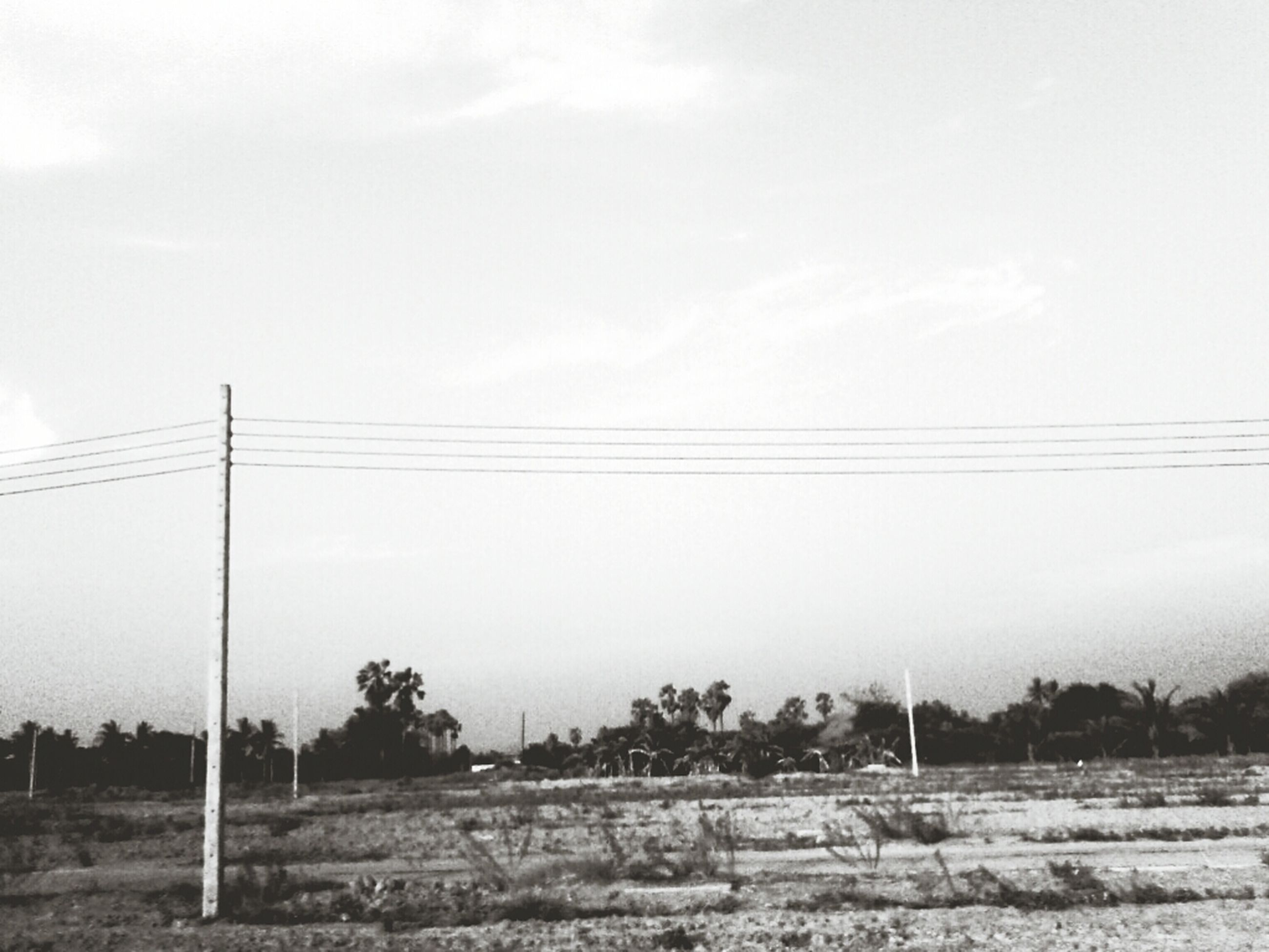 power line, electricity pylon, cable, electricity, power supply, sky, fuel and power generation, connection, tranquility, landscape, tranquil scene, tree, field, nature, power cable, scenics, technology, beauty in nature, day, outdoors