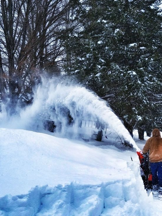 Winter Snow Cold Temperature Beauty In Nature Nature Tree Outdoors Nature Beauty In Nature Weather Warm Clothing Motion The Way Forward Scenics Day Tranquil Scene Real People Mountain Sky Snow Blowing Blizzard2017