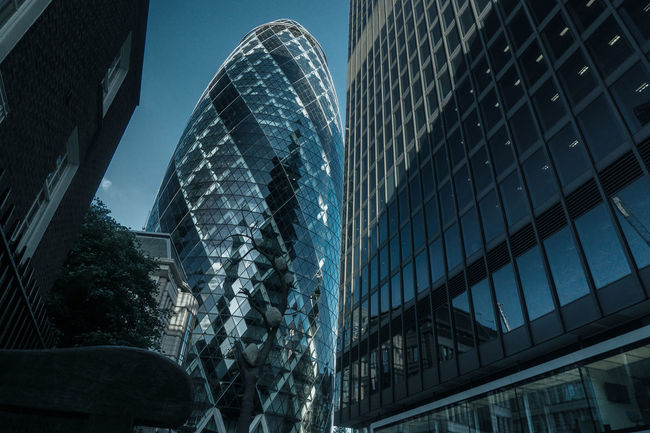 The Gherkin Architecture Architecture Blue Building Exterior Built Structure City City Life Clear Sky Eyeemphoto Financial District  Gherkin Tower Glass Glass - Material Low Angle View Modern Office Building Outdoors Place Of Work Reflection Skyscraper Tall - High Tower Urban Skyline