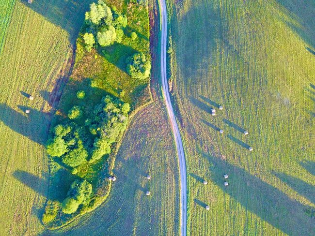 Summer green Aerial View Landscape High Angle View Scenics Agriculture Rural Scene Outdoors Road Day Beauty In Nature Nature Forest No People Tree Flying Winding Road