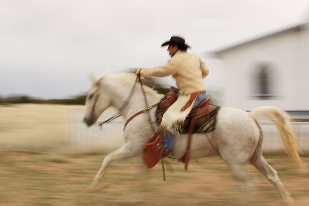 Beautiful stock photos of cowboy,  Animal Themes,  Blurred Motion,  Close-Up,  Cowboy