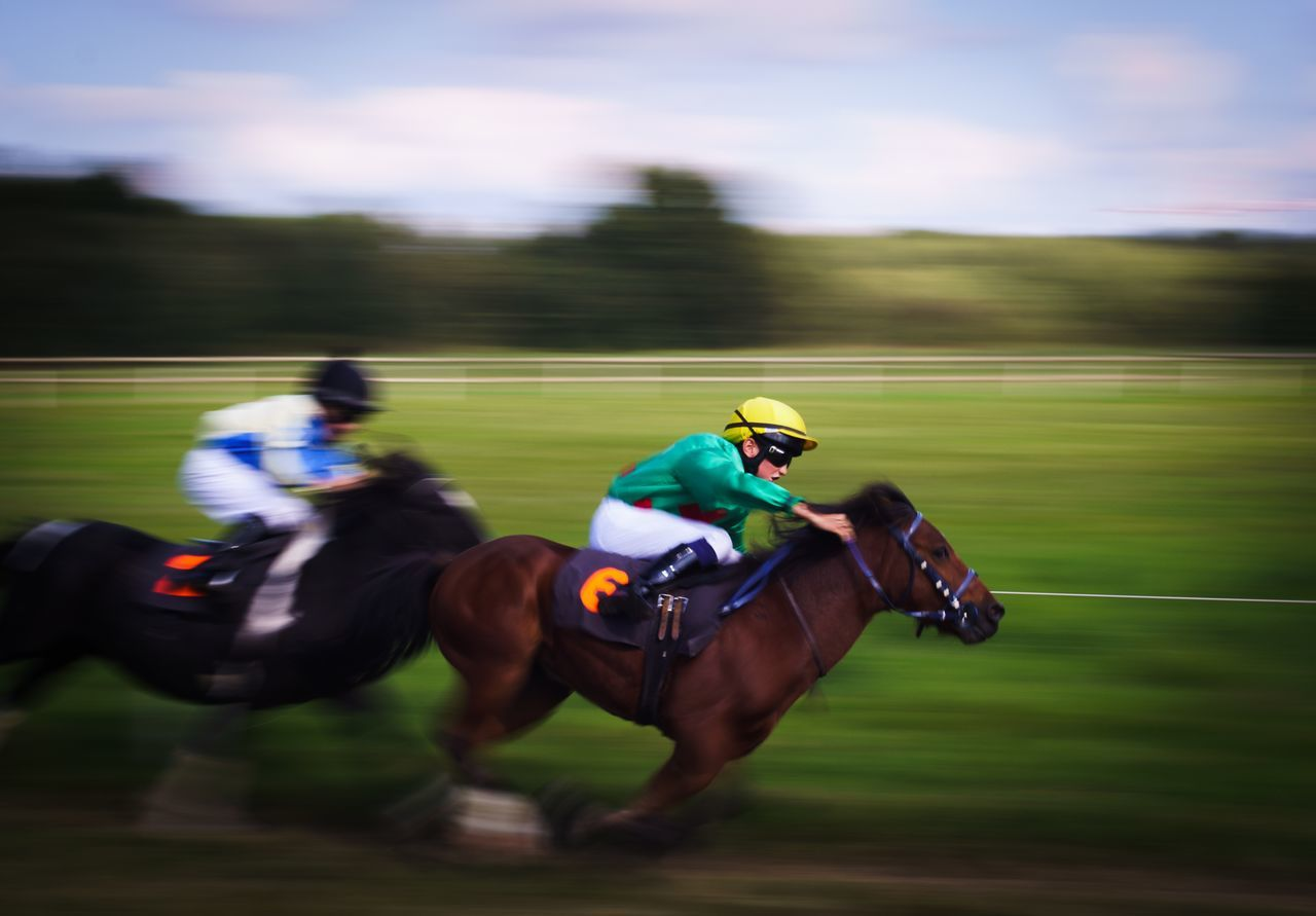 Beautiful stock photos of pferde, horse, jockey, competition, real people