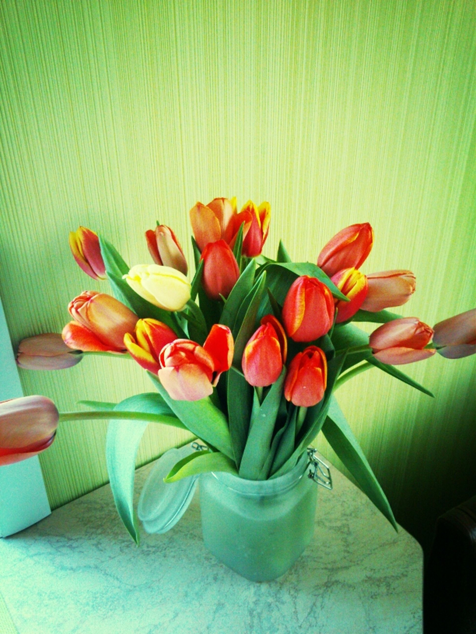 flower, indoors, freshness, petal, fragility, red, vase, flower head, table, plant, tulip, potted plant, growth, beauty in nature, close-up, home interior, nature, multi colored, bouquet, leaf