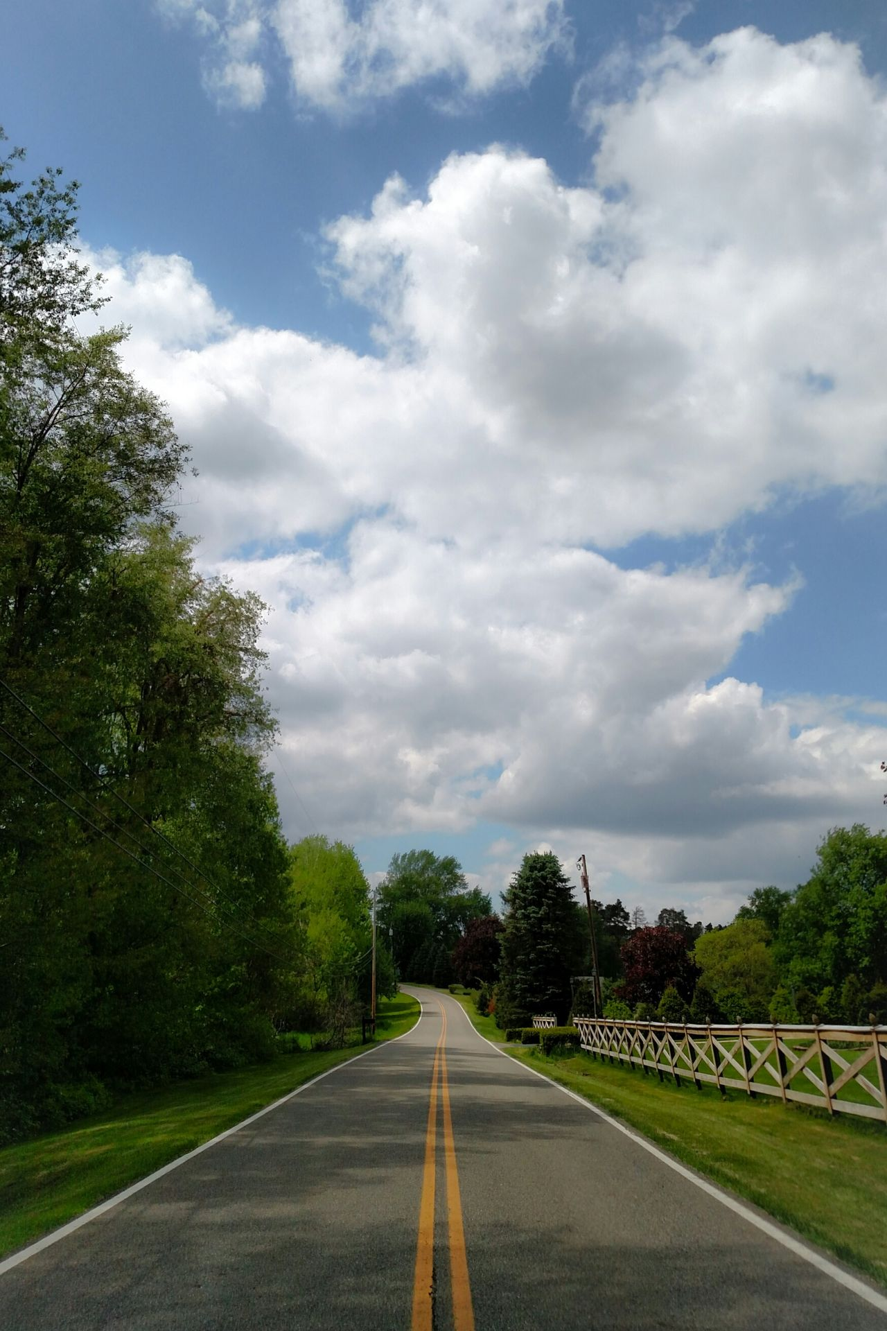 Todays Weather Report Blue Sky And Clouds Blue Sky White Clouds My Hometown East Liverpool Ohio, USA My Street Where I Live Where I Am Where I Come From The Great Outdoors With Adobe Simple Photography Through My Lens Trees And Sky Ladyphotographerofthemonth Femalephotographerofthemonth Look Up And See Beauty My Cloud Obsession☁️ Tree Lover