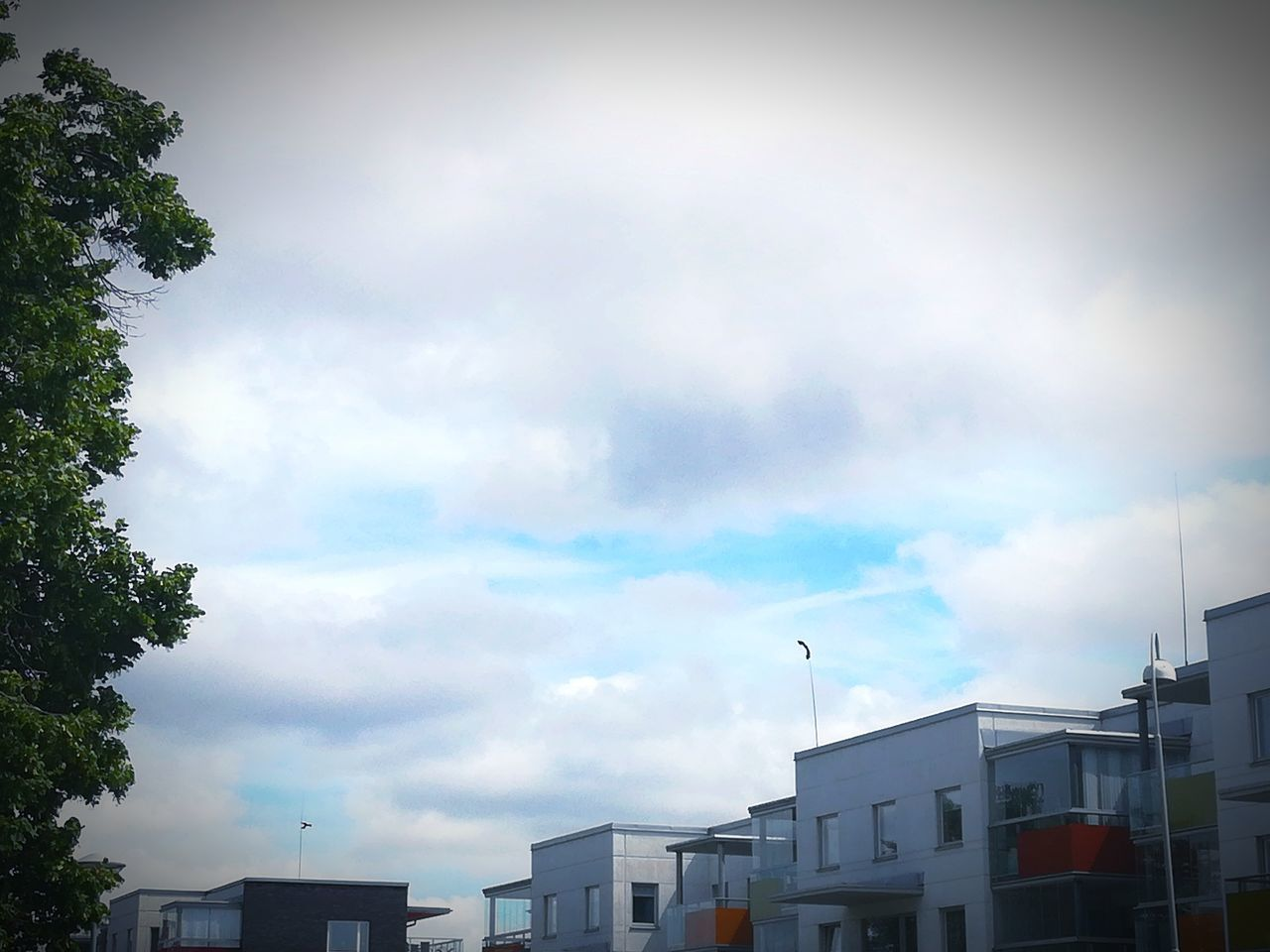 sky, architecture, cloud - sky, building exterior, built structure, no people, low angle view, day, outdoors, city, growth, tree, nature