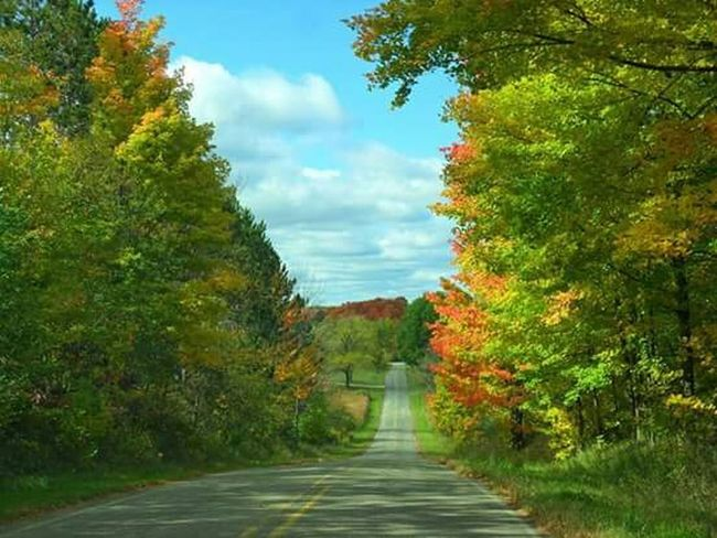 Very Green Downhill Autumn Pure Michigan Cool_capture_ Country Road