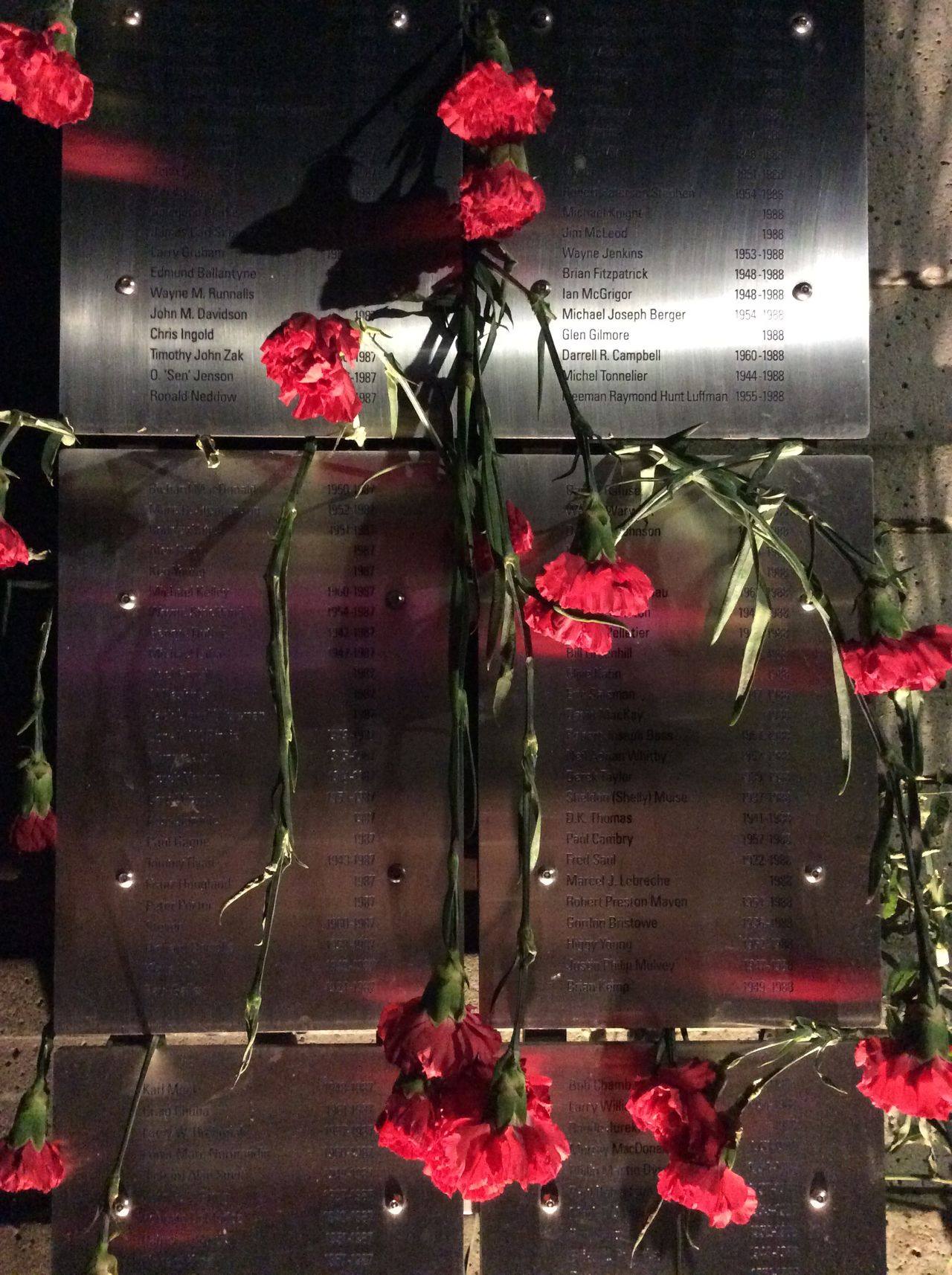 Toronto Canada Memorial red carnations Steel Plaque names of the deceased Inscribed remembering Nighttime Lights