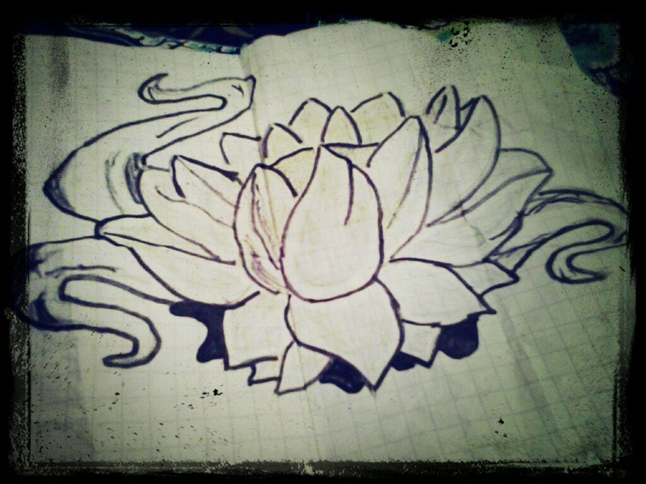 mi beatifull flower