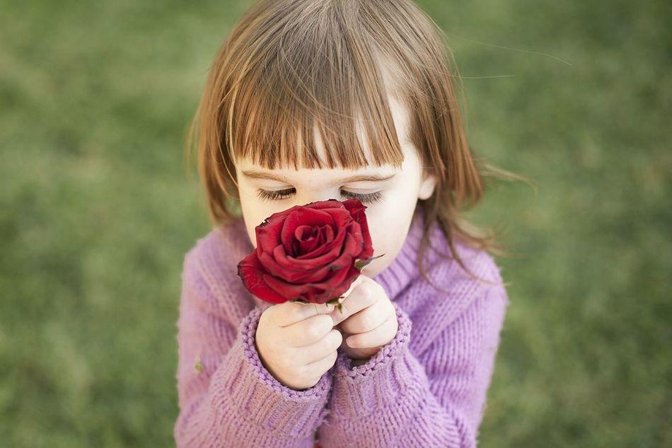 Beautiful stock photos of roses,  4-5 Years,  Baby Girls,  Babyhood,  Bangs
