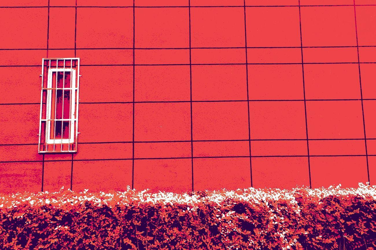 Colors EyeEm Best Edits Architecture Streetphotography