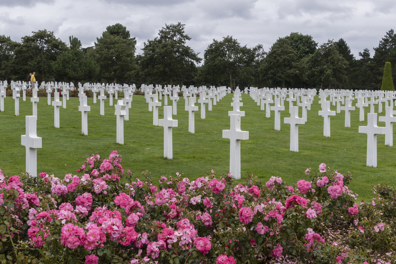 Cross D-Day Operation Overlord Patriotism Cemetery Cross Flowers Grass Grave Gravestone Graveyard Memorial Spirituality Tombstone Tranquility War Cemetery
