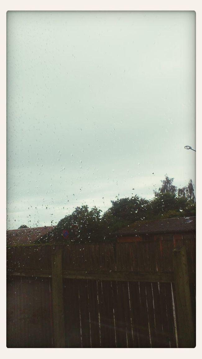 Rainy Day Raindrops