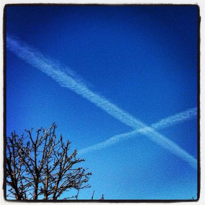 X Marks the Spot in Carlsbad by LoveLiveMusic