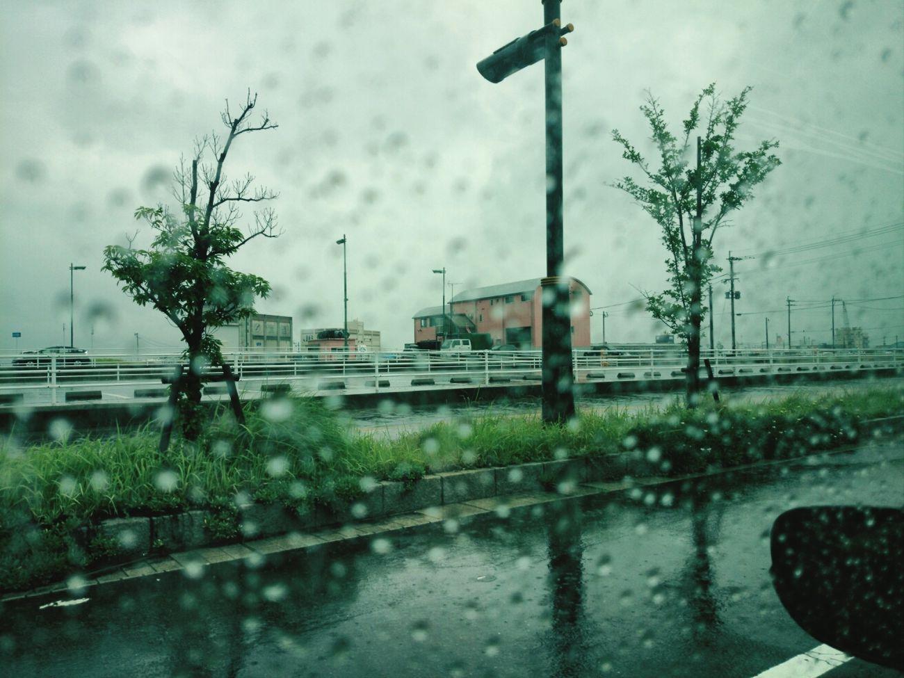 先日の大雨