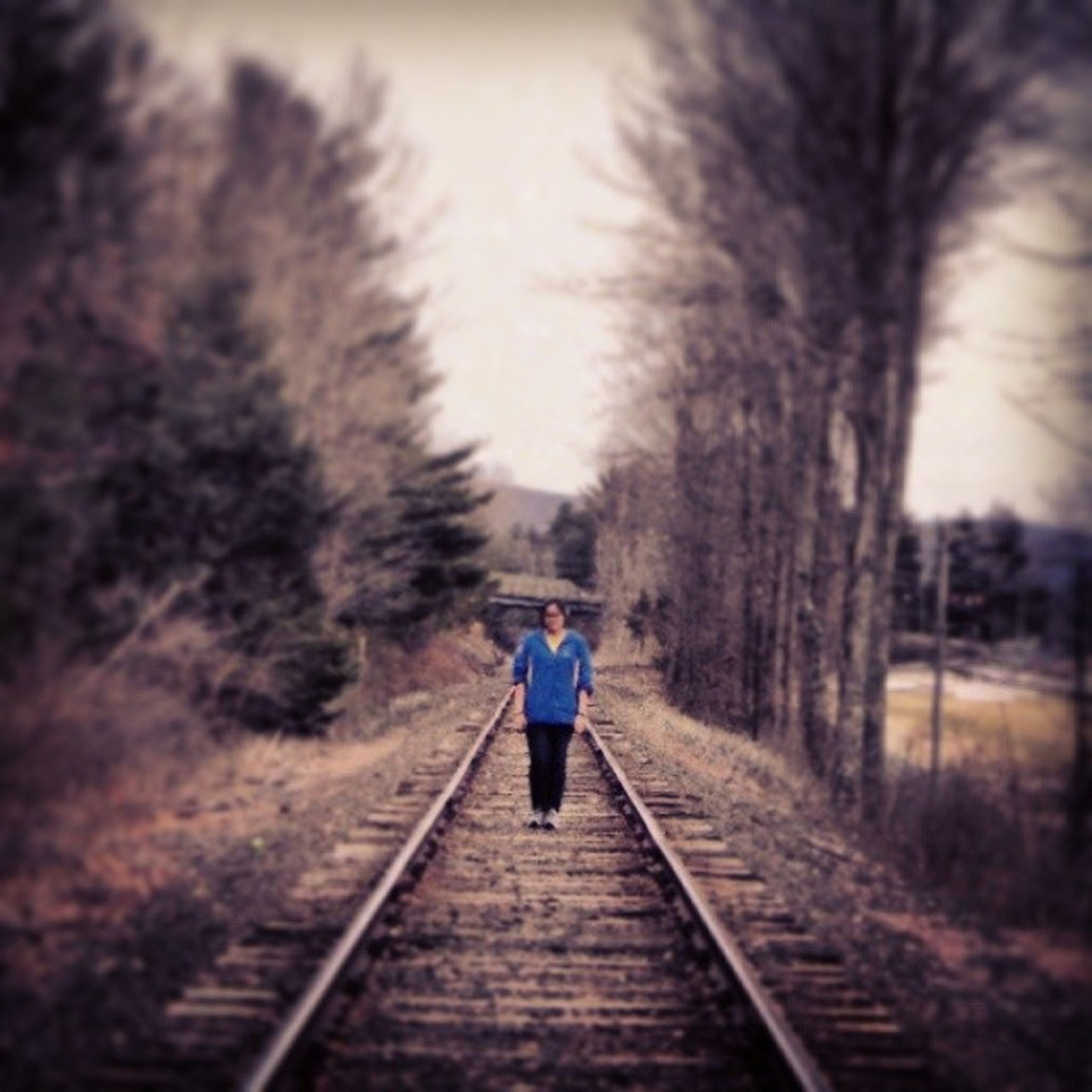 Lost in the housatonic rail Tb Housy Spring