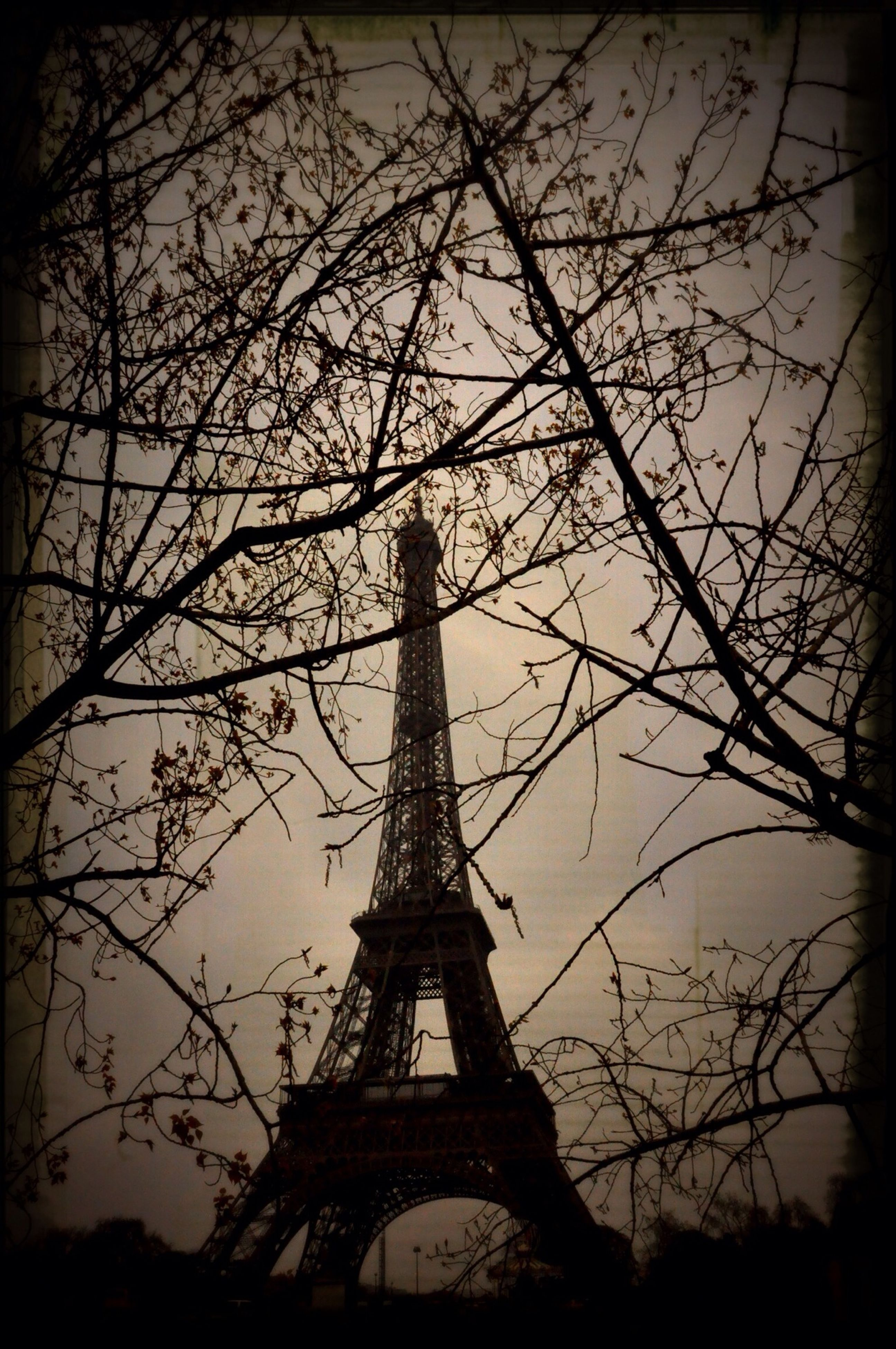 low angle view, architecture, built structure, bare tree, building exterior, transfer print, tree, religion, place of worship, tower, auto post production filter, spirituality, sky, branch, church, famous place, history, eiffel tower, travel destinations