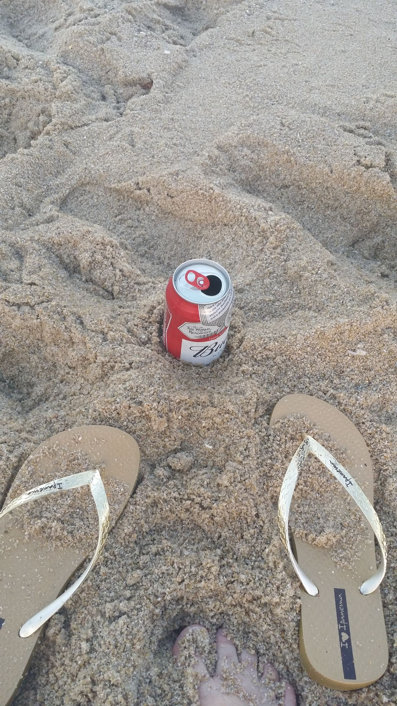 Sand Beach Sunlight High Angle View Day Outdoors Nature Relaxing View Relaxing Moments Ineed Beachhome Imaloneallthetime Imalone Ilike Peace And Quiet Peaceful Peace And Tranquility MyPlace❤️❤️❤️❤️❤️❤️❤️❤️❤️❤️❤️❤️❤️❤️❤️❤️❤️❤️❤️❤️❤️beer and peace very I need Daylight Whitefeets 😀😊😉😃