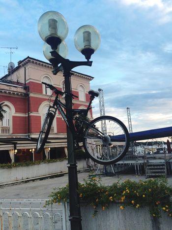 Thankyou Fkt The Tragedy I Need It For My Art Crazy Bicicleta