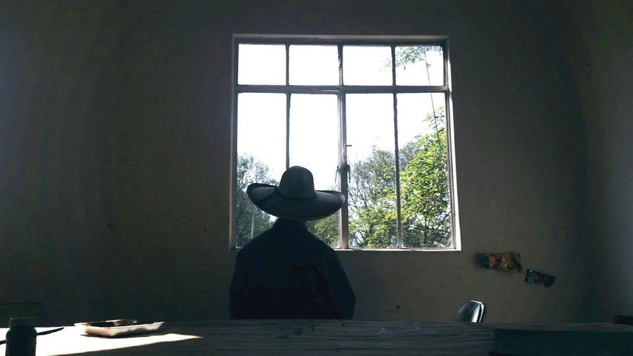 Las Hojas Sueltas Nunca Vuelven Studioday Artstudio Profesor Leaves Nature Window Indoors  Day Adult One Person Tree Young Adult