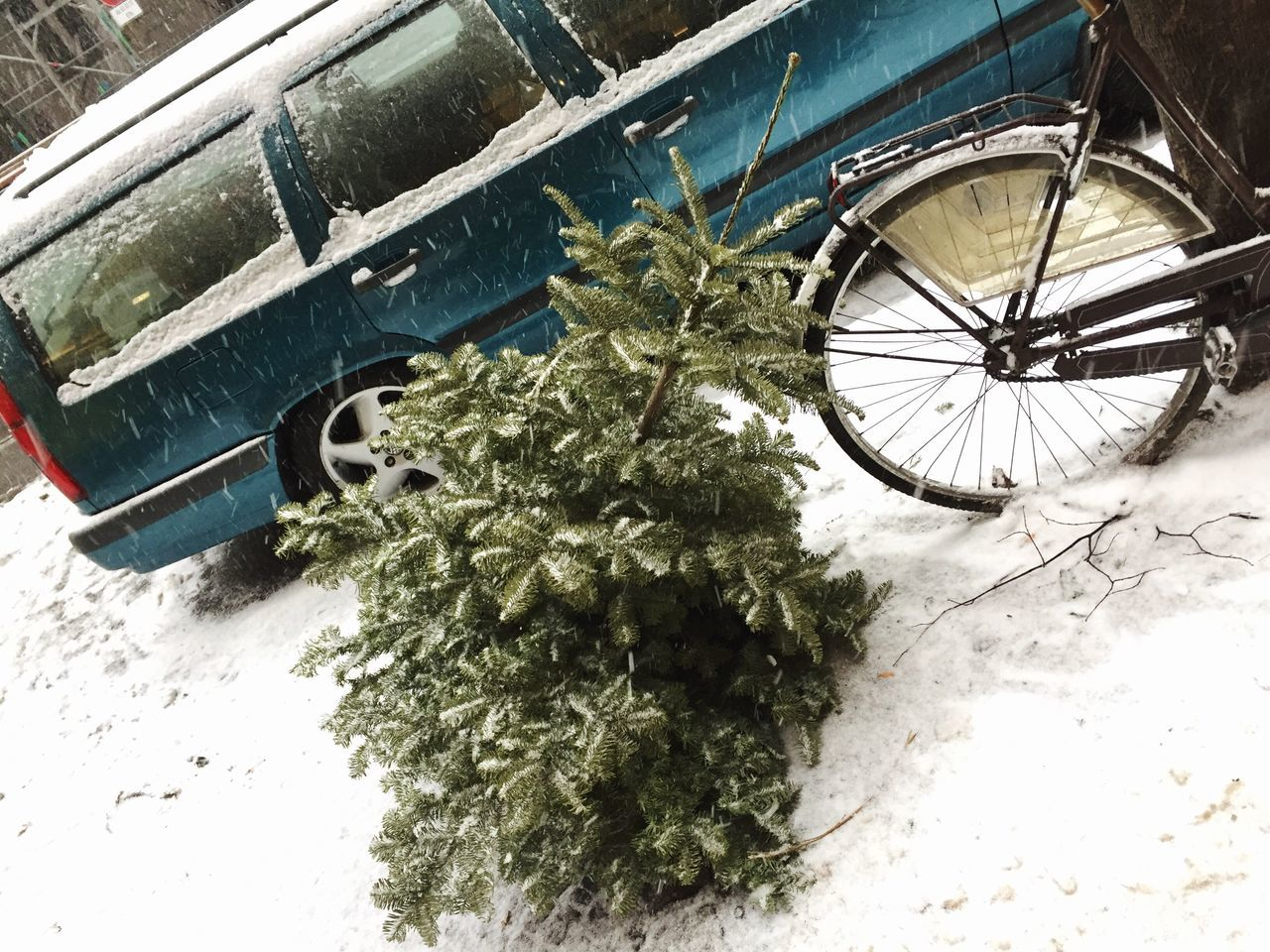 Winter Mode Of Transport Transportation Snow Land Vehicle Cold Temperature Weather Stationary No People Outdoors Nature Close-up Day Xmas Xmas Tree