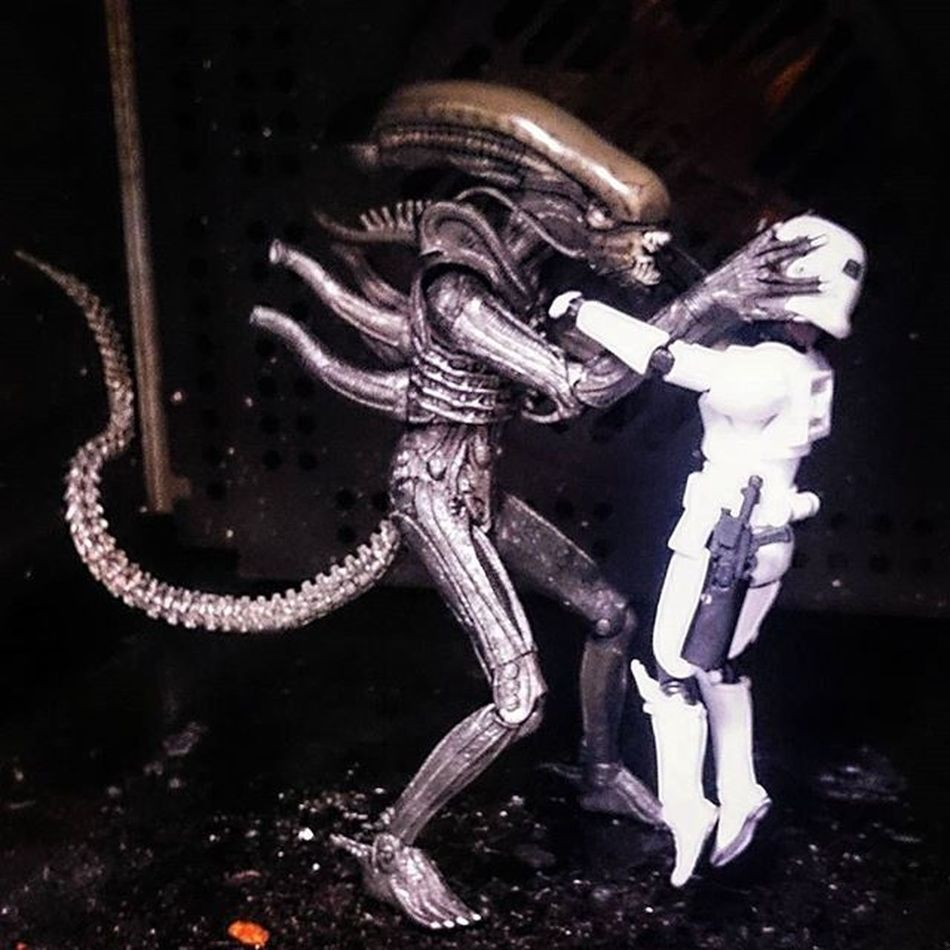 Geoff said he'd be happy to give Norman a lift! 😁 Normanthetrooper Geoffthexenomorph Afosw Toyphotography Toysalive Toyunion @toydiscovery Toydiscovery Toyslagram_Starwars Toyslagram Toysaremydrug Starwarselite @starwars_3lite Alien Xenomorph Toyoutsiders