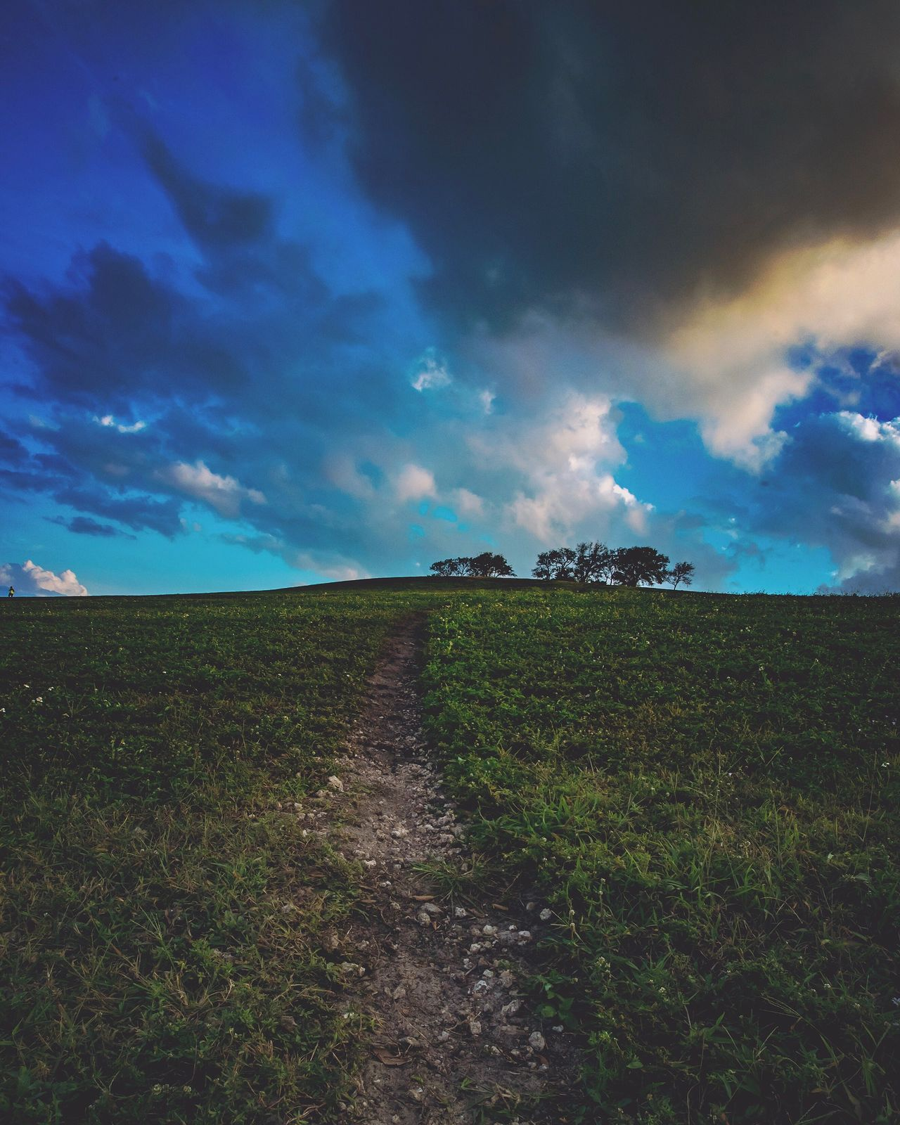 Sky Scenics Nature Field Cloud - Sky Beauty In Nature Landscape Rural Scene Outdoors Tranquility Agriculture Tranquil Scene No People Green Color Growth Day