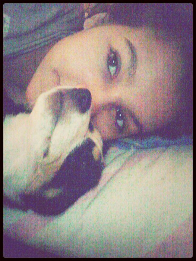 Dog Smile Morning Be Positive & Smile Always<3