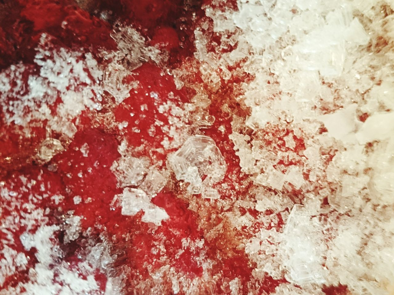 BLOODY Guess What ...? Frozen Strawberries Ice Crystal Freeze Bloodyred Guess Icecrystals Red And White Snowwhite