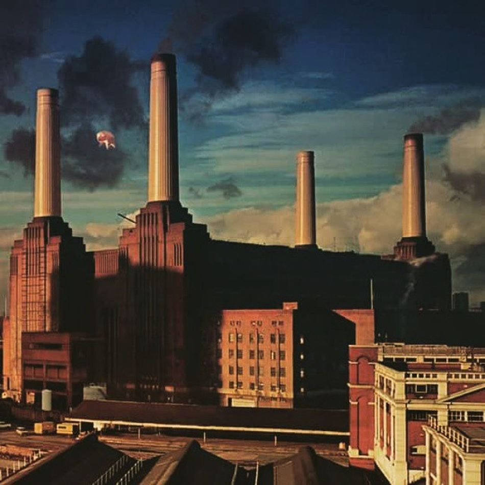 Cani pecore e maiali che volano ... cosa c è di meglio ? Animals Dogs Ships Pigs Other_of_all Pink Floyd Gilmour Sound Soundofsound Soundreturn BigMuff Dynamic Mistress Like4like Picoftheday Photooftheday L4l