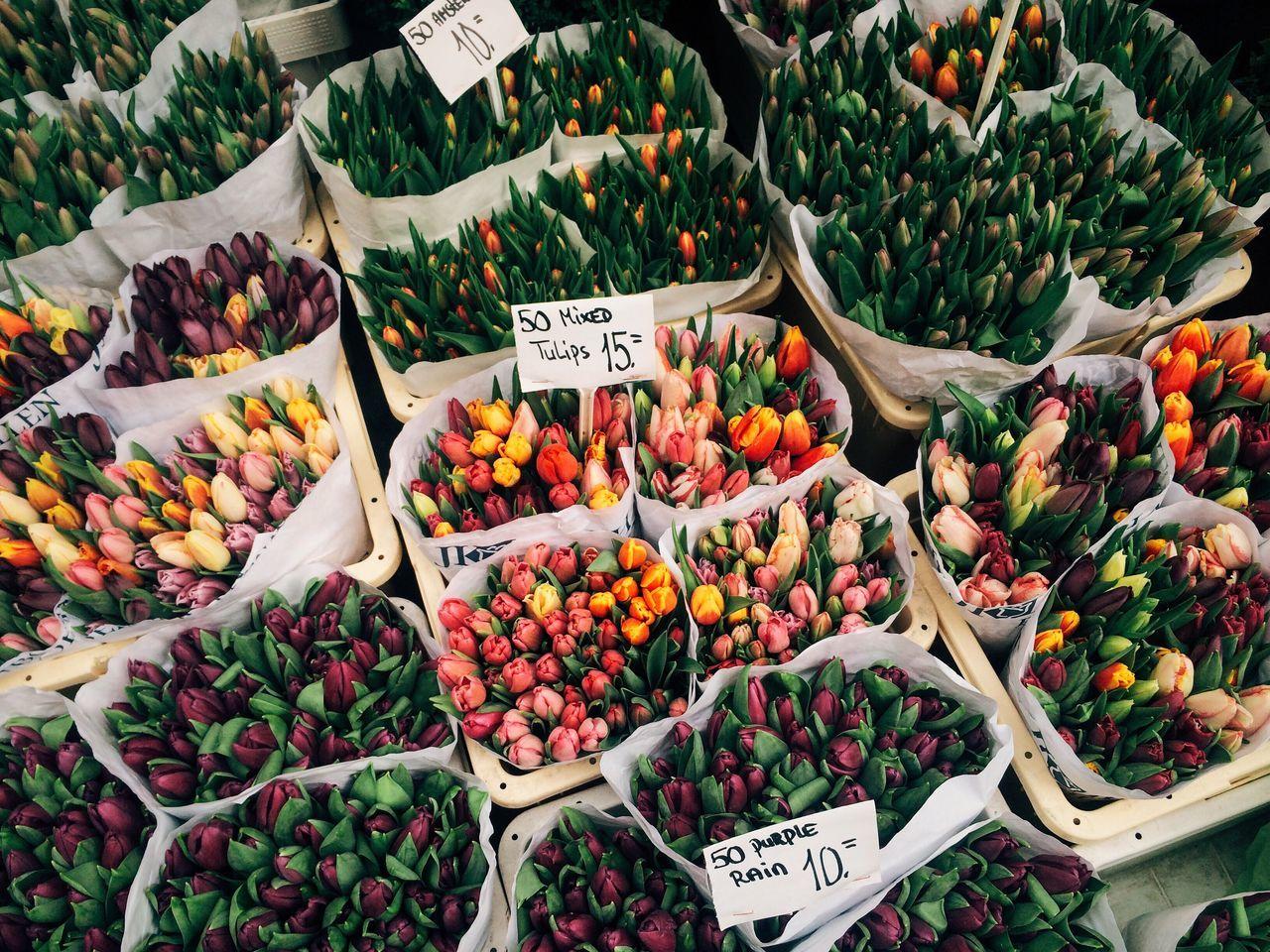 flowers Flower Market Tulips Dutch tulip Fresh flowers eyeemphoto Market Bestsellers 2017