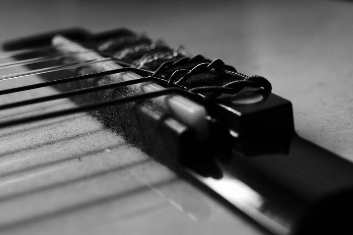 Saddle and bridge Close-up No People Indoors  Guitar Guitar Strings Guitarstrings Black And White Photography Black&white