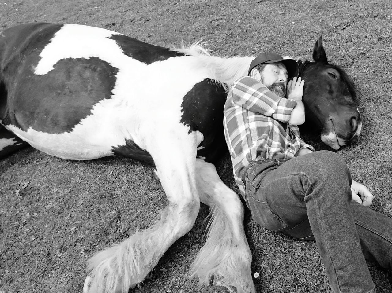 High Angle View Man Hugging Horse