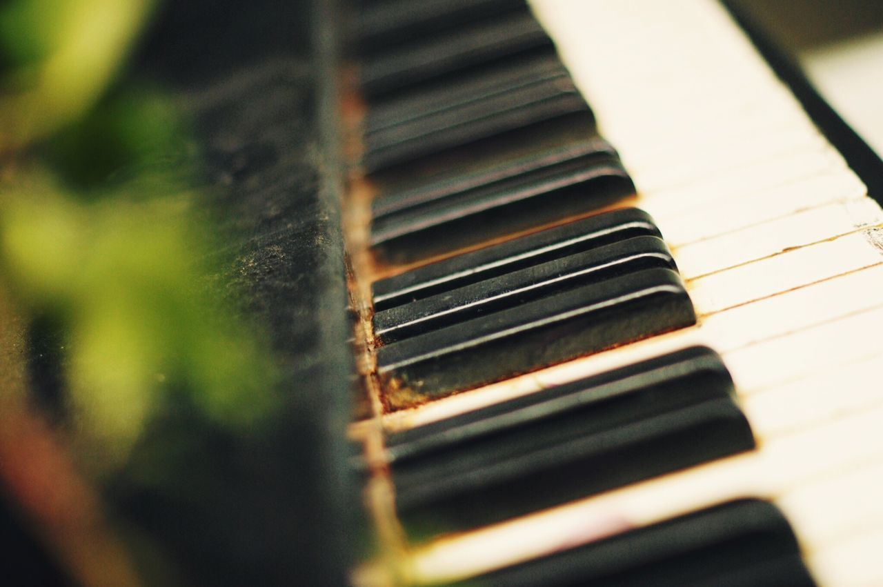 Декаденс в центре Москвы First Eyeem Photo EyeEm Gallery EyeEm Best Shots Eye4photography  Photography Piano Music Musical Instrument No People Selective Focus Close-up Arts Culture And Entertainment Piano Key Piano Musical Instrument String Indoors  Fretboard Day Moscow
