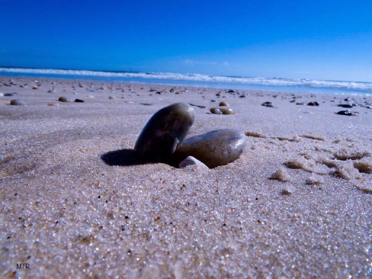Beach Sea Sand Nature Shore Sea Life No People Outdoors Summers Fireislandnationalseashore LongIslandNY SouthShore Beach Smithpoint Beach