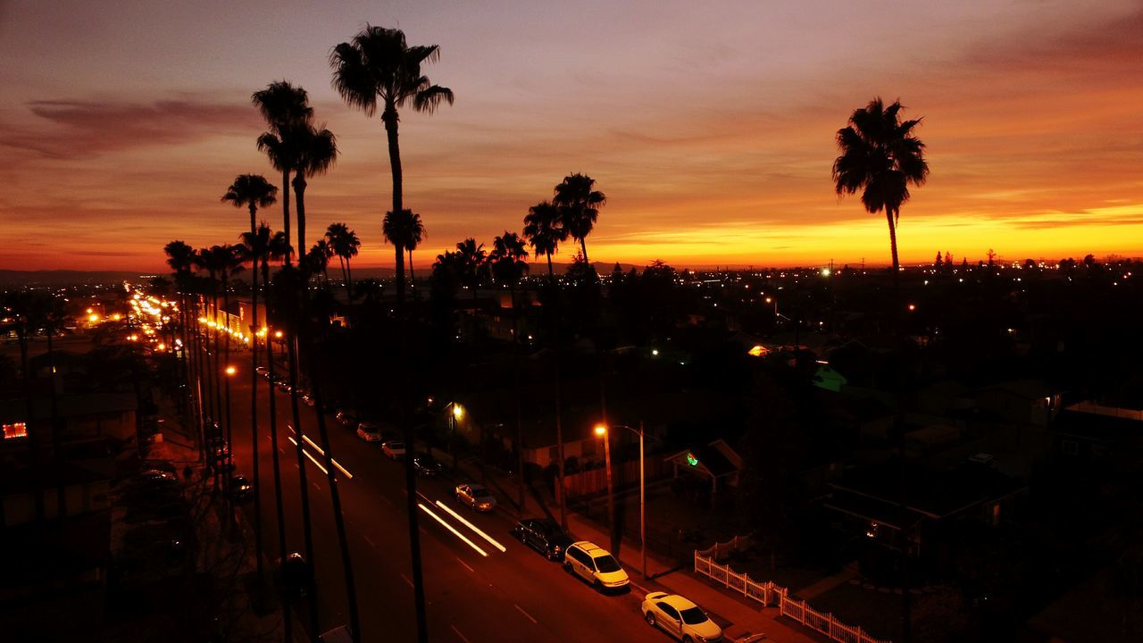 Dronephotography Aerial Shot Aerial View Outdoors Cityscape Urban Skyline Sunset Hello World Horizon Cityscape Tree Palm Tree Dusk Night No People California Cali Igniting City Social Issues Cultures Sea Vacations Travel Destinations Arrival