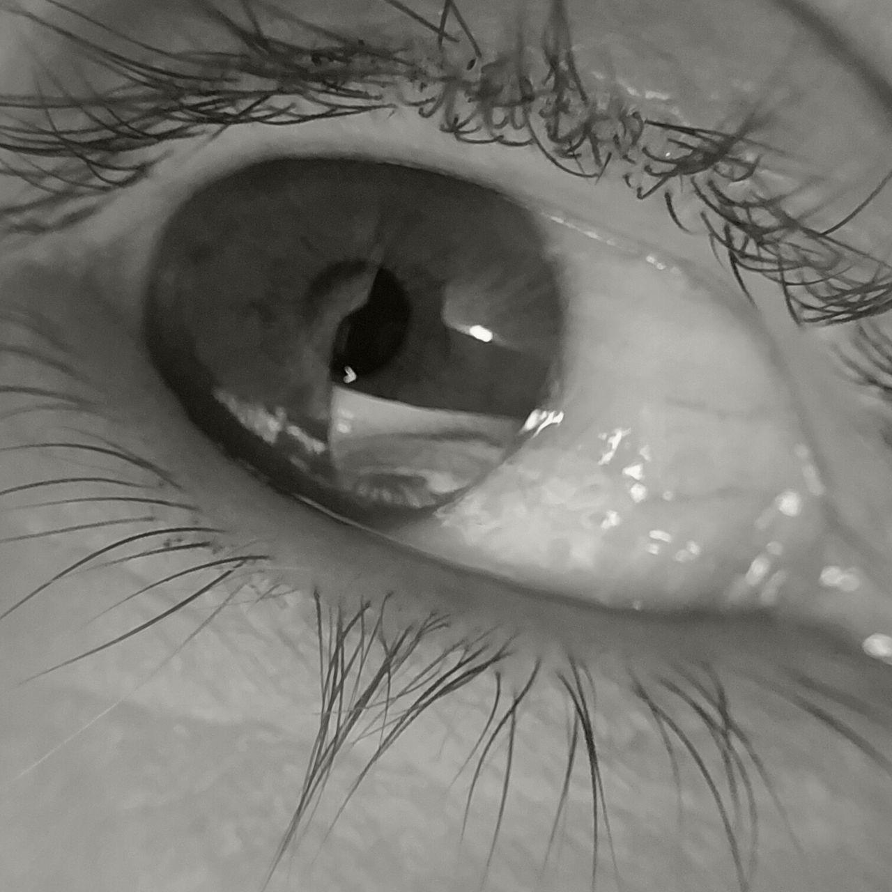 Black And White Body Part Close-up Day Eye Eyeball Eyelash Eyesight Human Body Part Human Eye Human Skin Iris - Eye Macro MUR B&W One Person Outdoors People Portrait Real People Sensory Perception The Portraitist - 2017 EyeEm Awards Woman