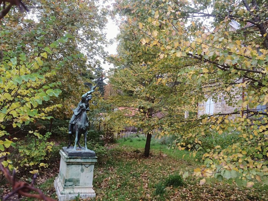 A small statue in the nature. Tree Outdoors No People Statue Sculpture EyEmNewHere Nature Greece Royal Residence