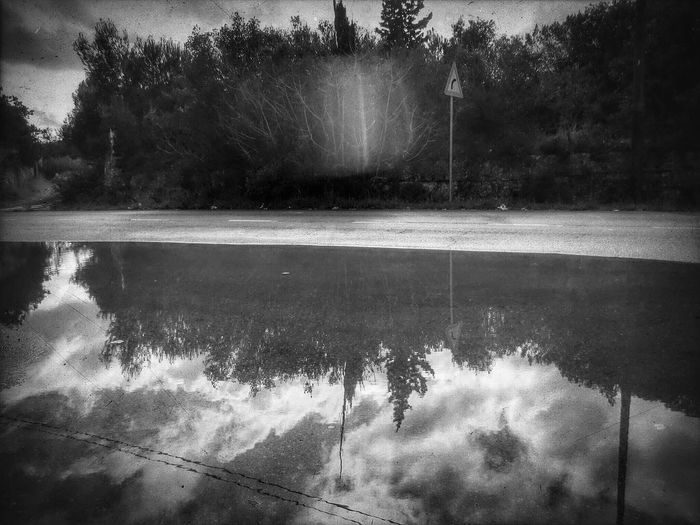 La luce oltre la siepe ... Lights And Shadows Blackandwhite Photography Clouds And Sky Nuvolerapide Nuvolebianche Riflessidiluce Riflessi Sull'acqua