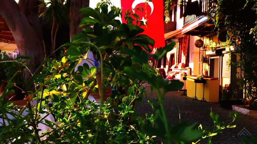 Outdoors Plant Leaf Lantern Building Exterior Tree Architecture Day No People Built Structure Nature Growth Beauty In Nature Flower Flag Turkis Flag Travel Destinations Beauty In Nature Nature Flower Head nerede Kalkan Antalya Turkey