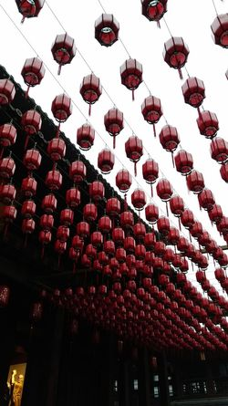Travel Photography Travelwithme From My Point Of View Outdoor Photography Hangzhou 杭州 Streetphotography 燈籠 寺院 Red No People Traditional Festival Day Outdoors