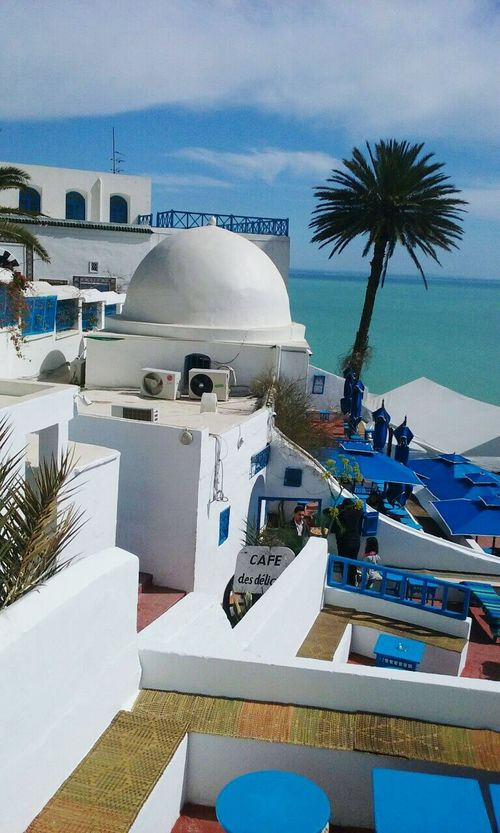 Building Exterior Architecture Built Structure Palm Tree Dome Sky Travel Destinations Sea City Tourism Water Place Of Worship City Life Cloud - Sky In Front Of Outdoors Day No People Tall - High Town Tunis Sidi Bou Said Tunisia Café Des Délices