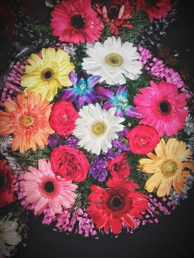 Flower Multi Colored Pattern Variation Pink Color Flower Head Close-up Outdoors Day No People Bookeh Rose🌹 Sunflower🌻 Lavenderflower Beautiful Beautiful ♥ Handmade For You Handwork