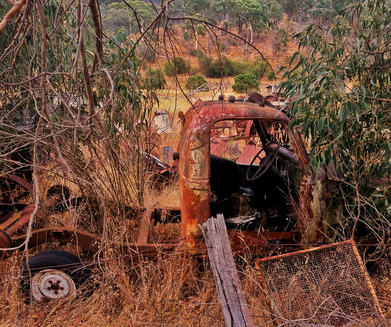 ' Rust In Peace' Rust RustyLicious Rustygoodness Rusty Metal Rusty Autos Scrap Heap Australia Eye4photography  EyeEm Masterclass Landscape_Collection Mobilephotography Exceptional Photographs Australian Landscape EyeEm Best Shots Beauty In Nature