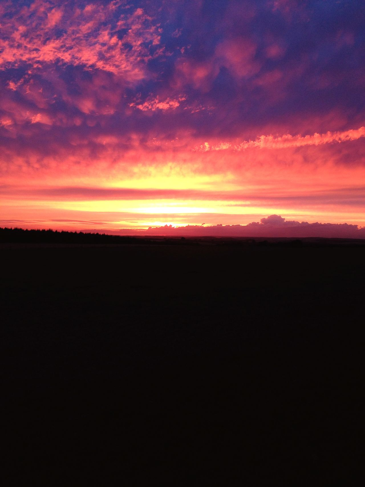 Dalby Forest High Rigg Farm Sunset Sunset_collection Sunset Silhouettes Nightphotography Summer2015 Summertime Camping