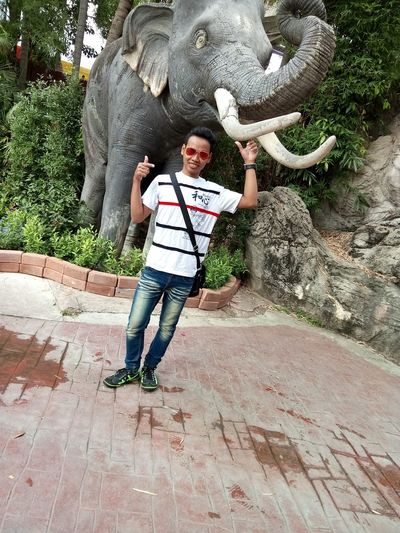 Animal Themes Day Elephant Elevangeliocambia Full Length Growth Lifestyles Mammal Nature One Person Outdoors People Real People Sculpture Statue Tree Young Adult