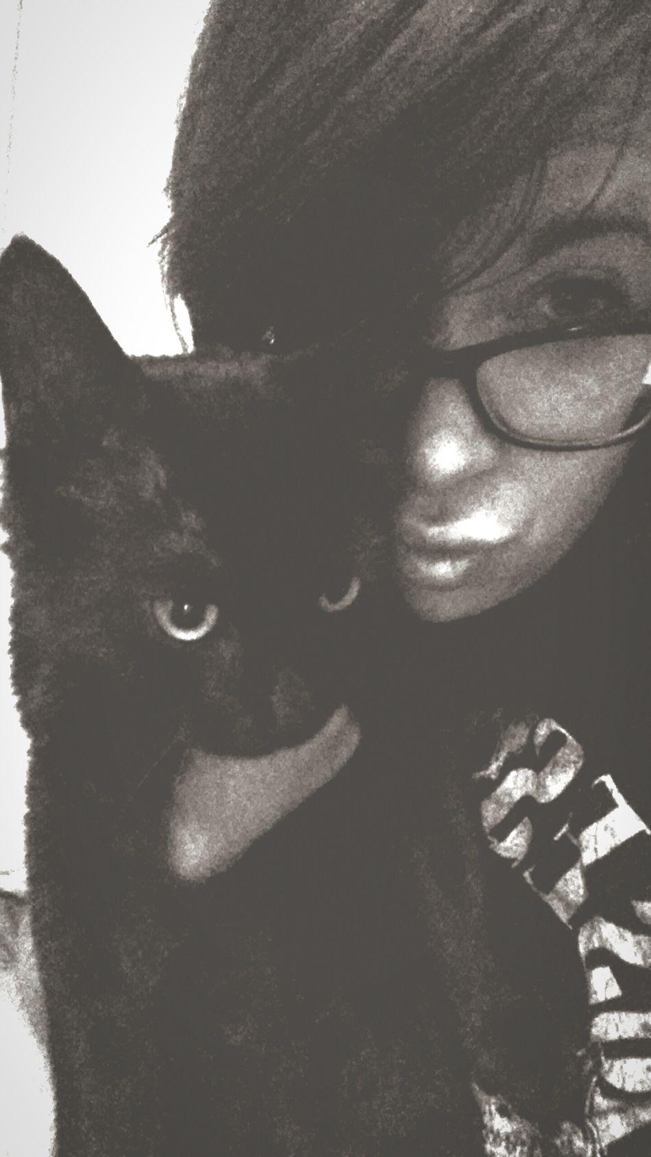 Salem Kitty Cat NewAddition Meow Purr BLackCat Blackcatsbringluck Followme Ilovemycat